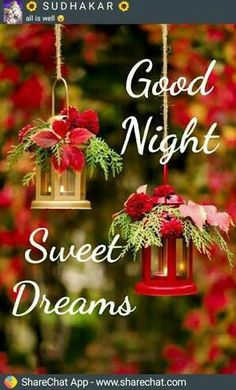 best gud night images photo pictures wallpaper down;load and share Funny Good Night Photos, New Good Night Images, Good Night I Love You, Good Night Friends, Good Night Sweet Dreams, Good Morning Good Night, Gud Night Wishes, Good Night Blessings, Good Night Massage