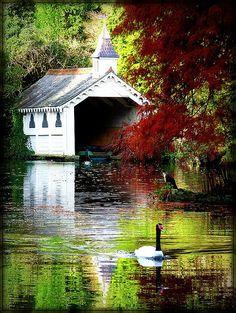 allthingseurope:    Trevarno, Cornwall, England  (by EBONY~CAT)