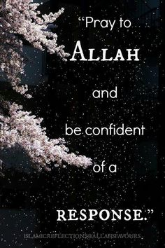 .Ask only Allah for Help
