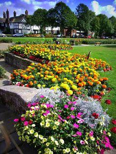 Невероятной красоты деревушка Порт-Санлайт, фотопутешествие Flower Garden Design, Amazing Flowers, Garden Landscaping, Architecture Design, Nice, Sunlight, Plants, Landscapes, Gardens