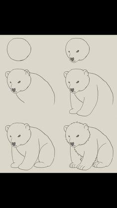 Oso polar, Paso a paso. Sigueme en instagram @rlaurarojas