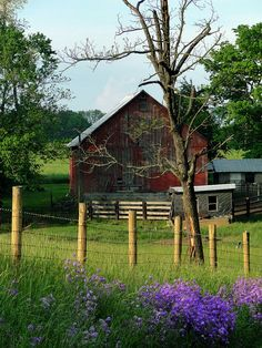 A pretty, rural scene near Salem, Indiana.  The flowers caught my eye, but the entire scene was photo worthy.    I have posted another photo of the same barn with the country road in the shot.  I love both views of it.
