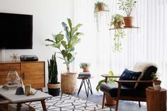 Cosy plant-filled living room via New Darlings Follow Gravity Home: Blog - Instagram - Pinterest - Facebook