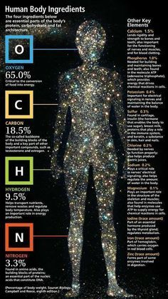Chemical breakdown of the human body. We are made of what the universe gives. Our entire composition comes from the cosmic dust of exploding stars. You are literally the stuff of stars. Science Facts, Life Science, Science And Nature, Fun Facts, Spirit Science, Earth Science, Star Science, Cosmos, Pseudo Science