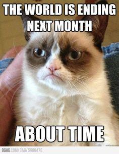 Grumpy cat can't wait. wow sooo funny  !!!!!!!!!!!!!!!!!!!!!! ha ha nha ha ha ha ha ha ha ha!!!!!!!!!!!!!!!!!!!!!!!!!!!!!!!!!!!!!!!!