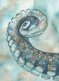 espiral de pulpo, ilustración de Tamara Phillips,