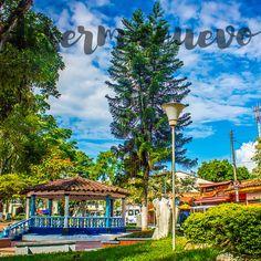Cali, Community, The Originals, Music, Pereira, Cartago, Cities, Musica, Musik