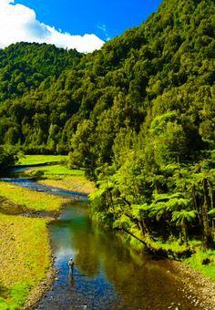 Awakino River North Island New Zealand Trout Fising