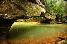 Rock Bridge, Red River Gorge, Ky ~best wading creek ever~Also, some great climbing, hiking, breath taking views