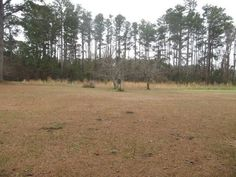 NEW LISTING!   OAK LANE CEMETERY RD., WILLISTON, NC    Cleared building lot in the quaint village of Williston This lot is level and located on a county road with no thru traffic. With quiet neighbors and only a short distance to some of the best fishing on the Crystal Coast bring your house plans and come see the lifestyle that this property offers.