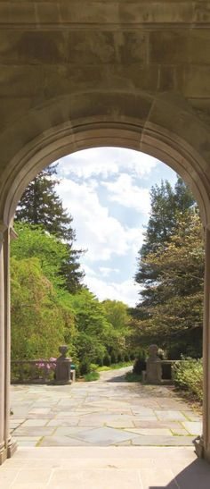Fototapeta Samoprzylepna Na Drzwi Ogród 138VET