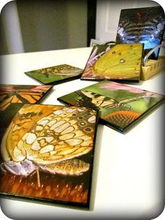 Etcetorize: DIY Butterfly Coasters,