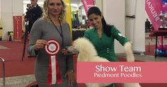 Meet our wonderful team of dog show staff and the dogs themselves, our amazing world-class Poodles & Dalmatians World Class, Dalmatians, Dog Show, Poodles, Meet, Amp, Amazing, Dogs, Standard Poodles