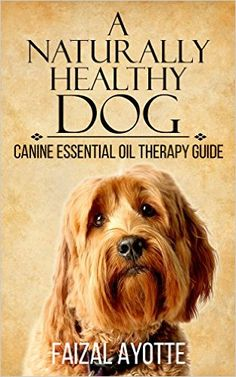 guide to using essential oils with dogs (our furry family)