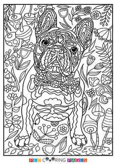 Free printable French Bulldog coloring page available for download. Simple and detailed versions for adults and kids.