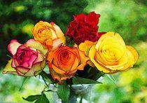 Flowers, Plants, Mother Nature, Eye, Art Print, Nice Asses, Photo Illustration, Florals, Planters