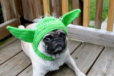 Pickles the Pug Crochet Hat Model from Etsy shop Sweethoot