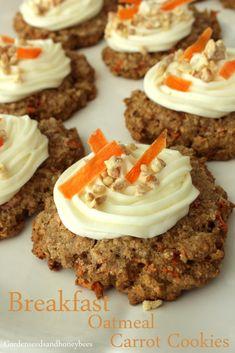 Breakfast Oatmeal Carrot Cookies - Garden Seeds and Honey Bees