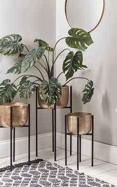 is a smart discovery platform for your home. Browse thousands of products including the Three Standing Brass Planters. Home Living Room, Living Room Designs, Living Room Decor, Bedroom Decor, Plants For Living Room, Beige Living Rooms, Dining Room, House Plants Decor, Plant Decor