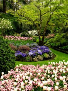 Englische Garten - Munich, designed by Benjamin Thompson