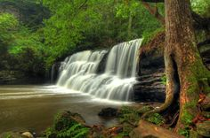 Mardis Mills Fall, Blount Coutny Alabama....We go here every summer! I work at Camp Woodmen right down the road!(: Fav swimming hole(: