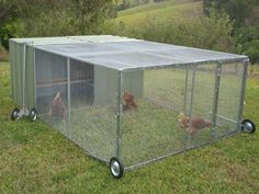Our Master Model Chicken Coop or Chicken Tractor is designed for those who want to keep more than a couple of chooks. Several chickens can live in a Tractor of this size quite comfortably.