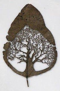 extraordinary leaf cut by artist Lorenzo Duran