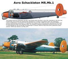 Avro Schackleton MR.Mk.I Air Force Aircraft, Ww2 Aircraft, Military Aircraft, Avro Shackleton, Plane Drawing, South African Air Force, May Bay, Engin, Royal Air Force