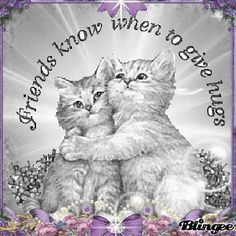 """A very warm welcome to our """"Sisters in Christ"""" group! Thank you so much for joining us! Have a beautiful day! Much love and gentle hugs. Genuine Friendship, Friend Friendship, Friendship Quotes, Friendship Images, Hug Pictures, Moving Pictures, Gifs, Friends Forever, Best Friends"""