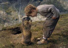 Marmot and little boy, Matteo    http://www.dailymail.co.uk/news/article-2193986/Matteo-Walch-8-strikes-remarkable-friendship-clan-marmots-Austria.html#axzz2JkczERaS