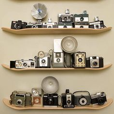 This would be cool to display books, flower vases, and picture frames too... As well as an old camera or two...