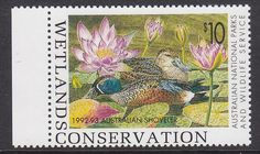 Quote Australian Stamps - Google Search Postage Stamps, Over The Years, Wildlife, Google Search, Quotes, Quotations, Stamps, Quote, Shut Up Quotes