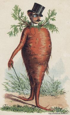 Bizarre Vintage Ads Carrot Man - Not sure the seeds are for growing carrots. Vintage Printable, Vintage Labels, Vintage Ephemera, Vintage Posters, Carrot Man, Flowers Illustration, Seed Illustration, Vegetable Illustration, Botanical Illustration