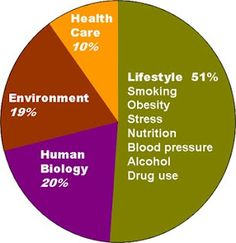 Epidemiology Café: Social determinants of health pie chart