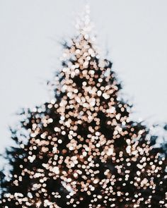 Christmas tree lights - Cool Chic Style Fashion