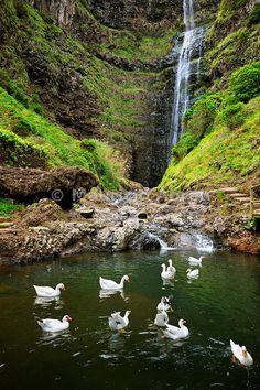 Aveiro waterfall, Maia. Santa Maria, Azores islands, Portugal