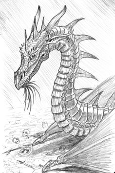 Dragon sketch...