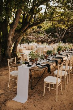 Absolutely magical Lisbon Botanical Garden wedding. Photo: @hugocoelhofotografia Botanical Gardens Wedding, Garden Wedding, Wedding Blog, Our Wedding, Event Planning, Wedding Planning, Wedding Altars, Reception Decorations, Lisbon