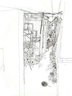 Drawing   APE MADE