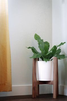 A walnut mid century style plant stand that is perfect for your crazy plant lady ways. *POT NOT INCLUDED* DETAILS: Available in: White oak, red oak, walnut, ash Stock sizes: 16 high and fits 10 pot >>Custom orders always welcome<< >> INTERNATIONAL orders welcome as well, message us for