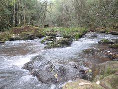 monte Misionero en Argentina, lugar fresco y natural para un relax