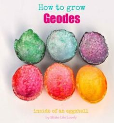 to Grow Geodes How to Grow Geodes--what a cool science experiment for kids!How to Grow Geodes--what a cool science experiment for kids! Cool Science Experiments, Science Fair Projects, Science For Kids, Science Activities, Activities For Kids, Earth Science, Summer Science, Science Chemistry, Preschool Science