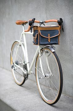 I need a handsome leather bike case!!!