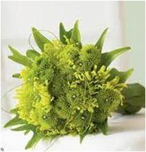 VIM-40 Daisies and ornamental leaves