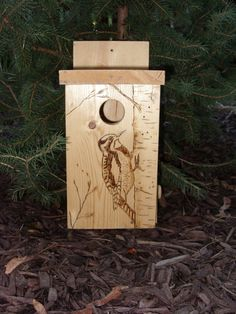 Birdhouse with Woodburned Sapsucker by The Woodburned Birdhouse on Etsy, $24.00