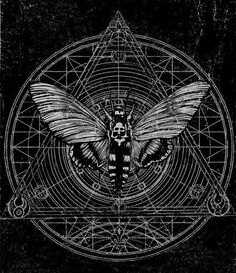 Black and White Magic butterfly geometry insect moth Wings occult sacred