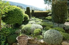 Listed as one of France's most remarkable gardens, La Louve (She-Wolf) is a private garden in the Luberon area of Provence created by well-known textile designer for House of Hèrmes, Nicole Vésian. Started in 1986,… View Post