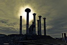 stork's nest on Roman ruins of Volubilis, Morocco