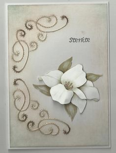Petra-loves-paper