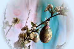 Dekoracje na gałęziach jabłonki